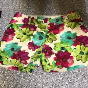 Limited size 8 shorts